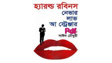 Photo of নেভার লাভ আ স্ট্রেঞ্জার Pdf Download – Never Love a Stranger pdf bangla