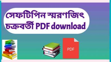 Photo of সেফটিপিন PDF download (স্মরণজিৎ চক্রবর্তী)